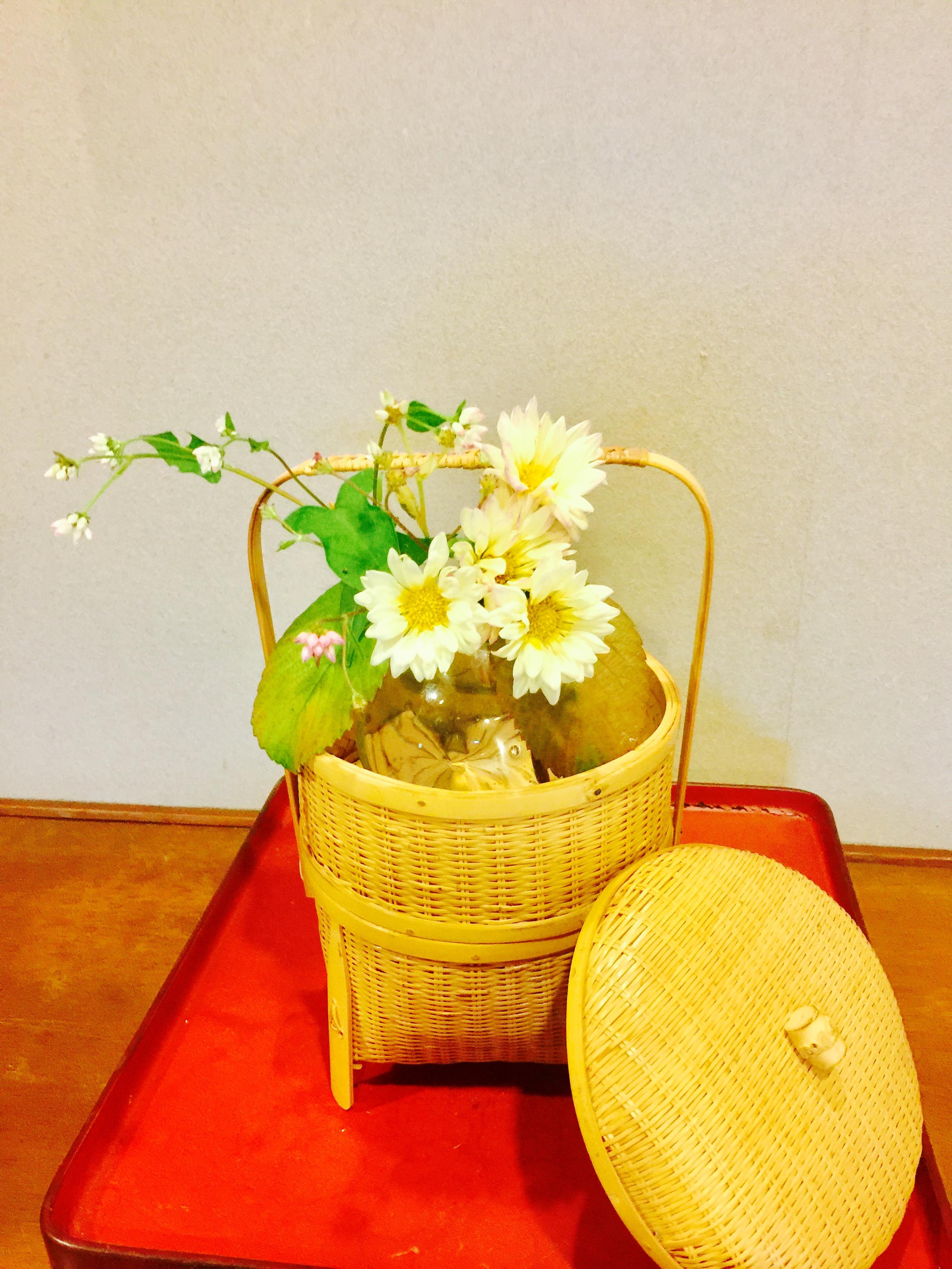 今日のお花の写真